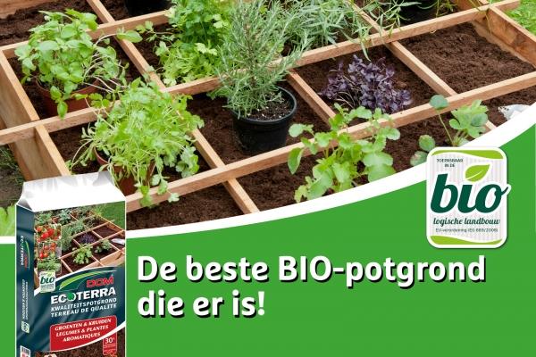 facebook-potgrond-groenten-kruidenB25F1C38-58E6-F473-33FA-058808660015.jpg
