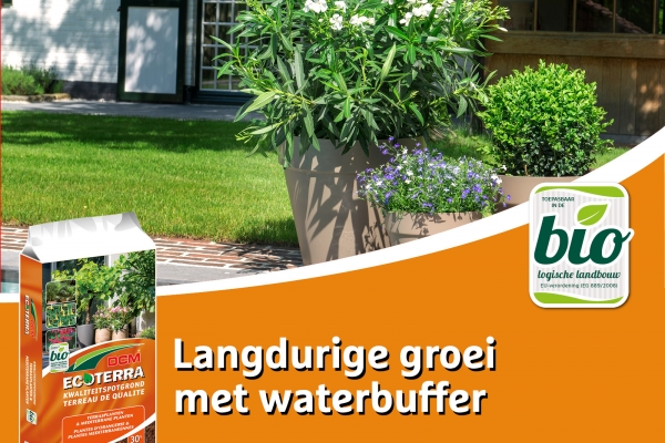 facebook-potgrond-terrasplanten20D76CE5-7A20-81D2-247A-1484D241AB50.jpg